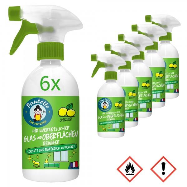 Paulette Desinfektions-Reiniger Desinfektionsmittel Glas Oberflächen