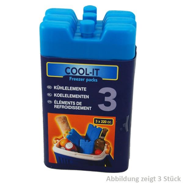 Kühlakkus Kühlakku Kühlelemente Kühlbox Kühlelement Eispack (je 220ml) TOP NEU